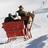 Badge winter sleigh rides